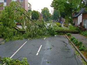 So schützen Sie Ihr Haus vor Sturmschäden